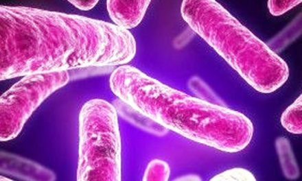 Mississippi Co. Recalling Frozen Meat and Poultry For Possible Listeria Contamination