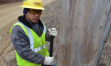 4-County pole inspections begin in New Hope
